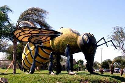 World's Largest Killer Bee