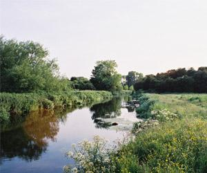 Hambrook Marshes