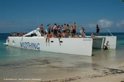 Wild Thing day trips