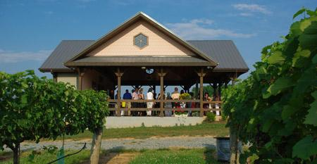 Junius Lindsay Vineyard