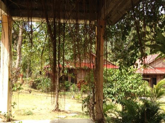 Tangkoko Dove Villas