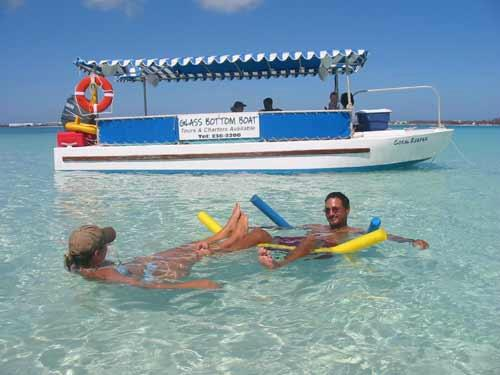 Aquatic Bermuda