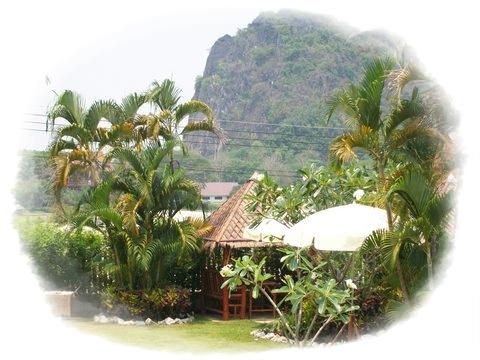 Homestay-Chiang Rai