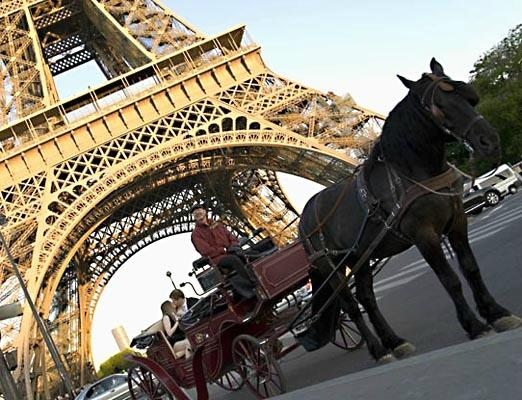 Experience Paris - Private Horse and Carriage Rides