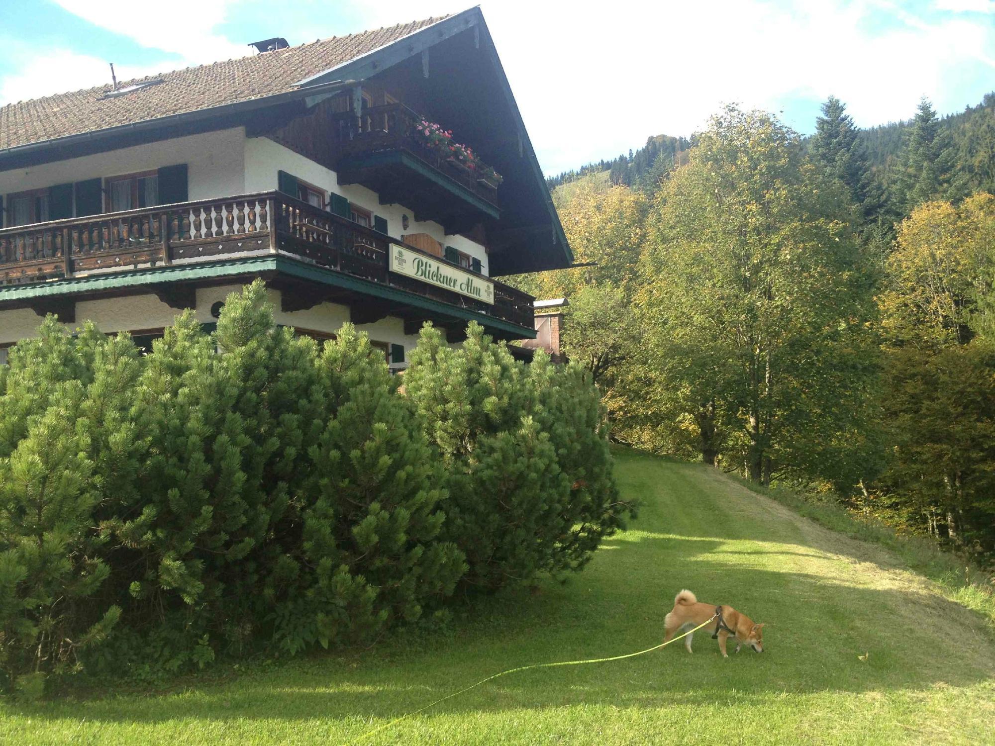 Almgasthof Blickner Alm