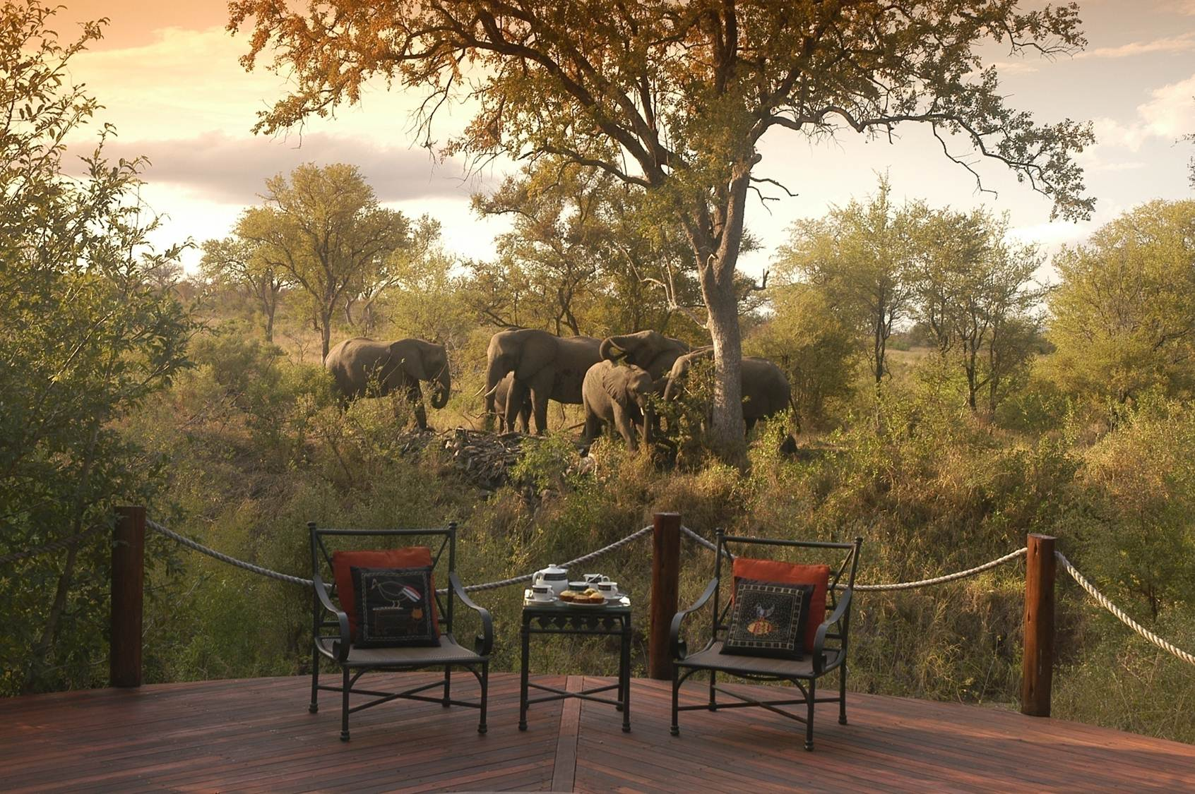 ‪Hoyo-Hoyo Safari Lodge‬