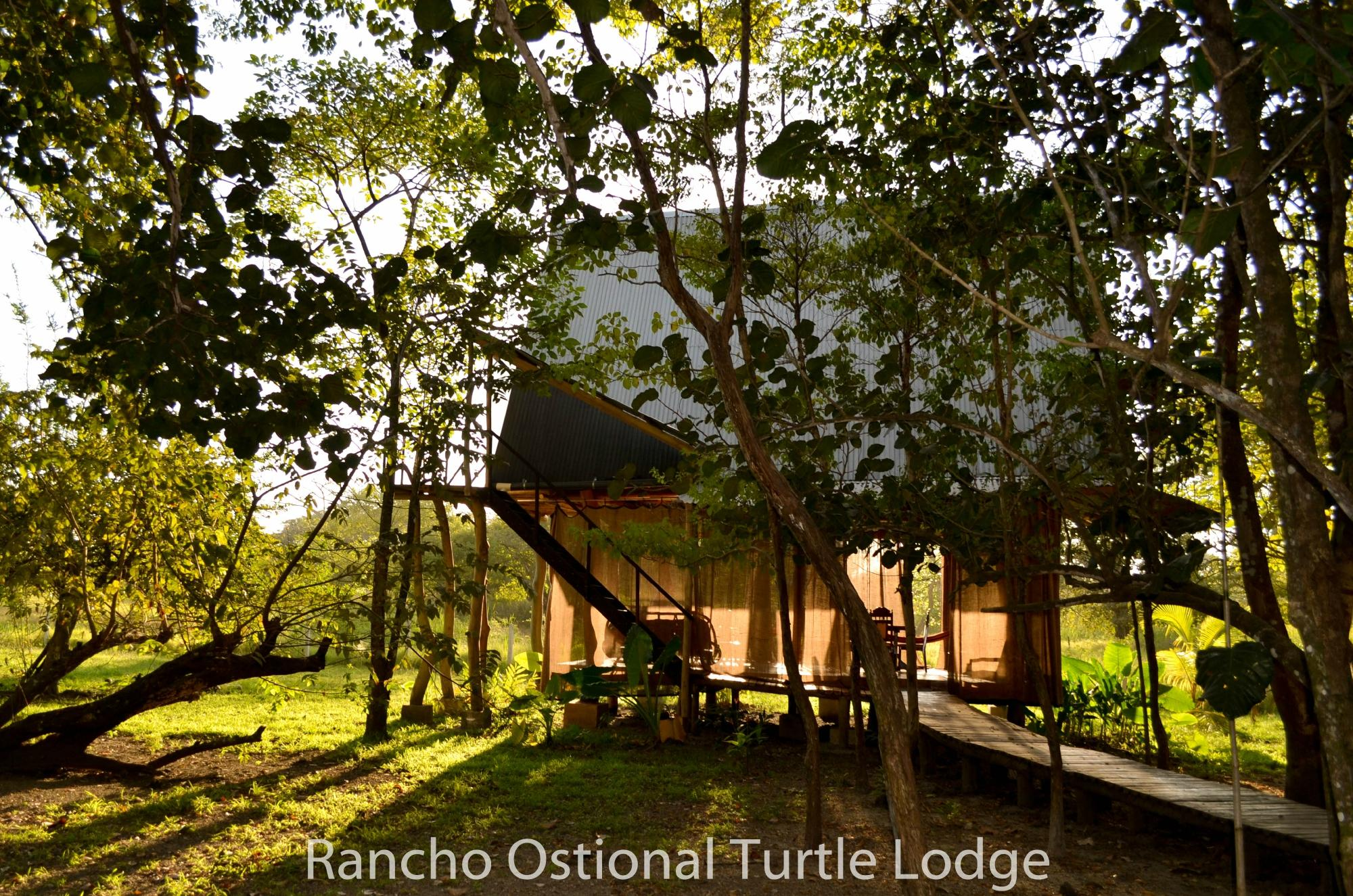 ‪Ostional Turtle Lodge‬