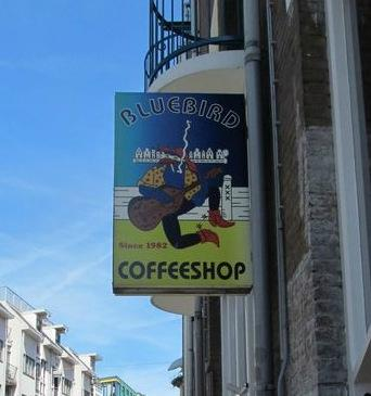 Coffeeshop Bluebird