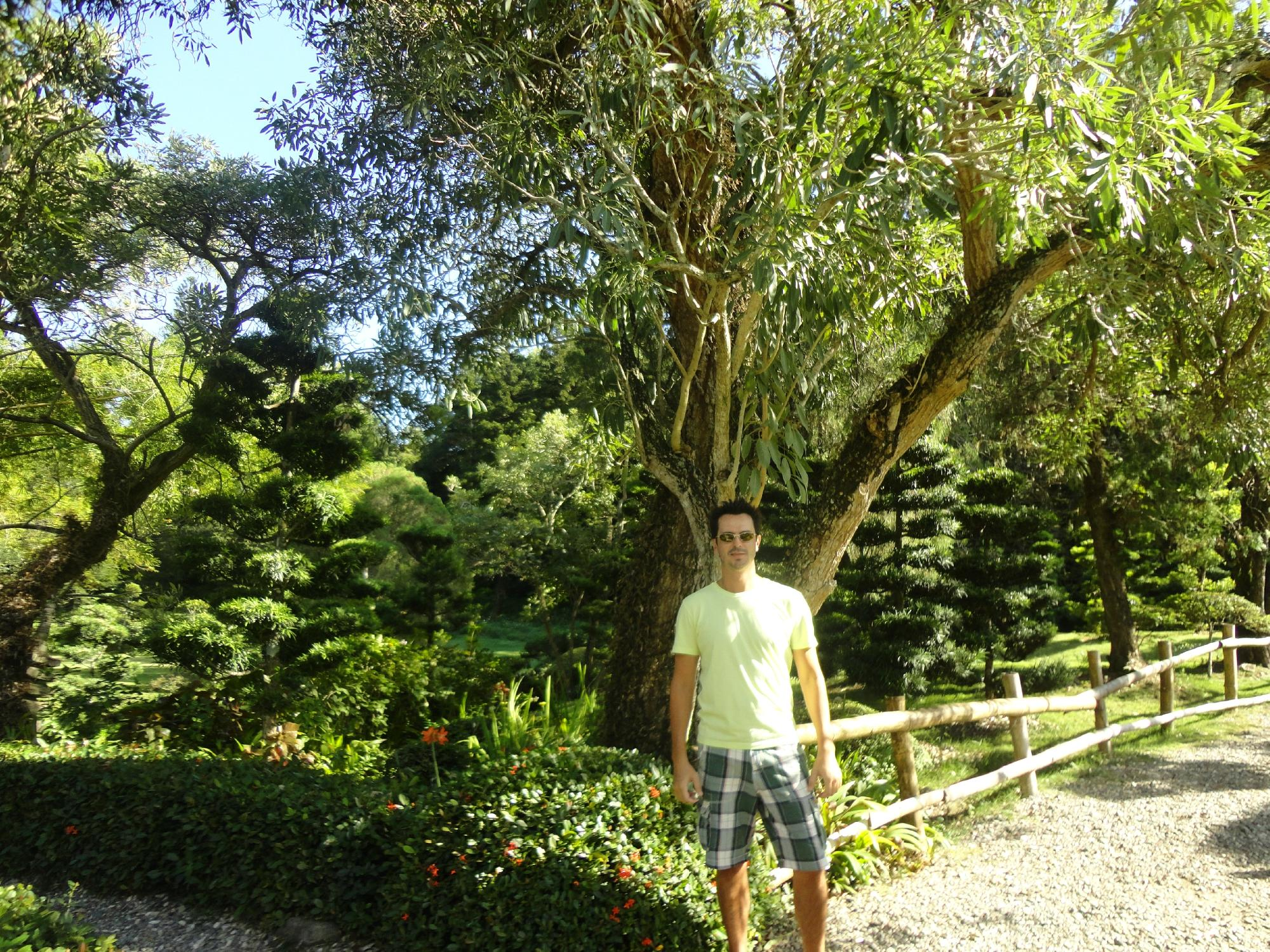 National botanical garden santo domingo dominican for O jardin ideal route de montauban bessieres