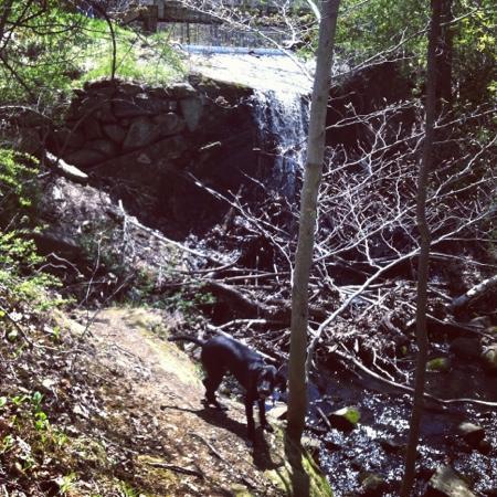 Jewel Falls