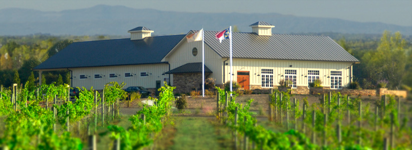 Owl's Eye Vineyard and Winery