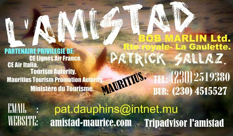 L\'Amistad (La Gaulette, Mauritius): Top Tips Before You Go (with ...