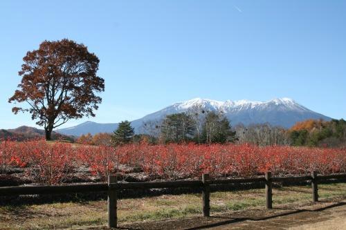 Kaidakogen Plateau