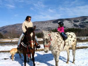 Mountain View Ranch
