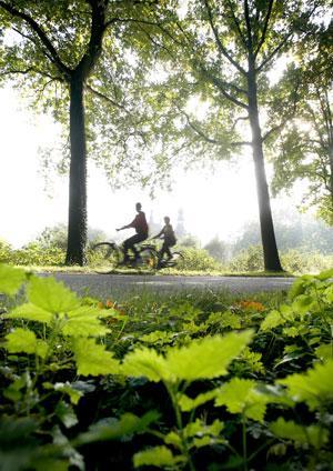 Leie-Scheldt Bicycle Trail