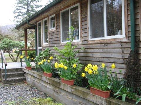 Skagit River Resort / Clark's Cabins