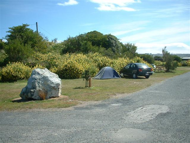 Dunedin Holiday Park