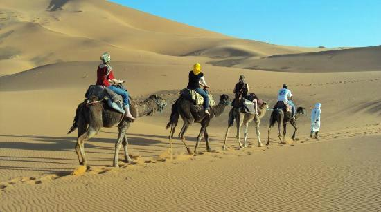 Tours Of Peace & Morocco Holidays - Day Tours