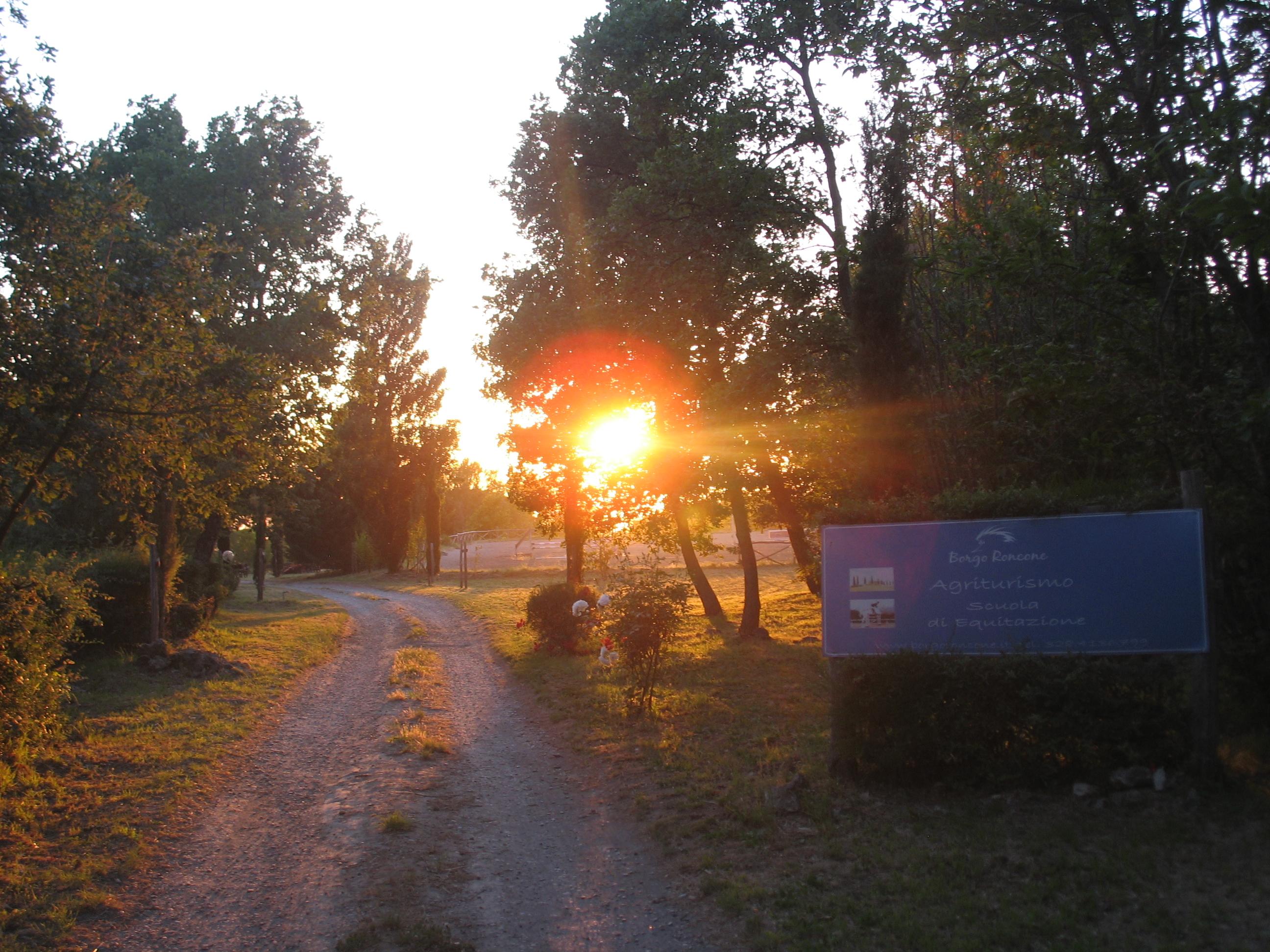 Azienda Agrituristica Borgo Roncone