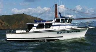 Blue Runner Sportfishing -  Tours