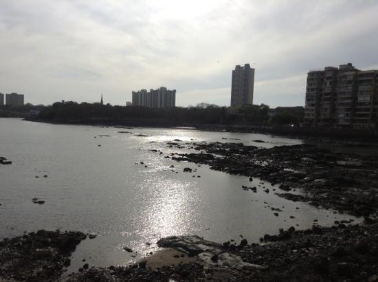 Mumbai Port Trust Garden