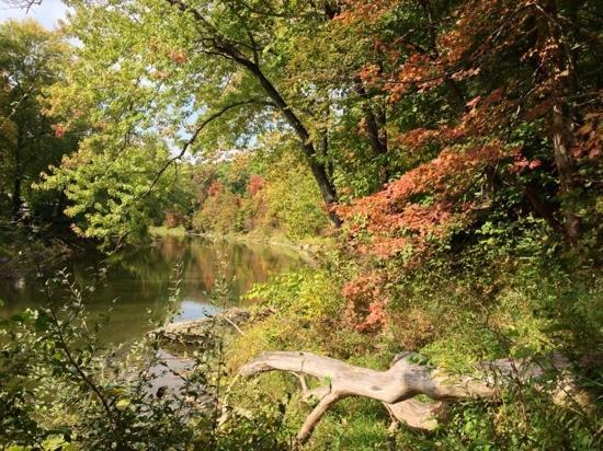 Clegg Memorial Gardens
