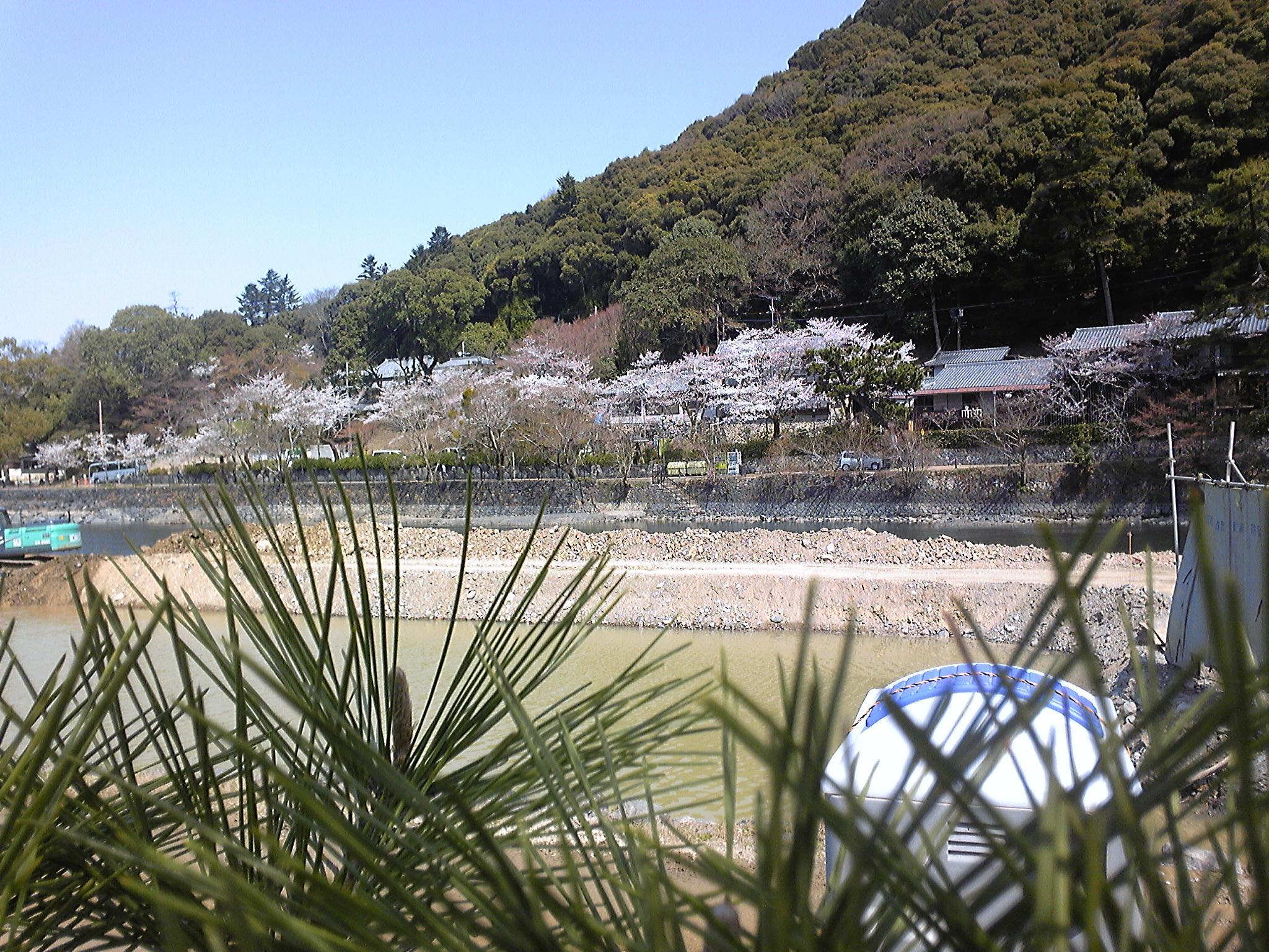 Kameishiro