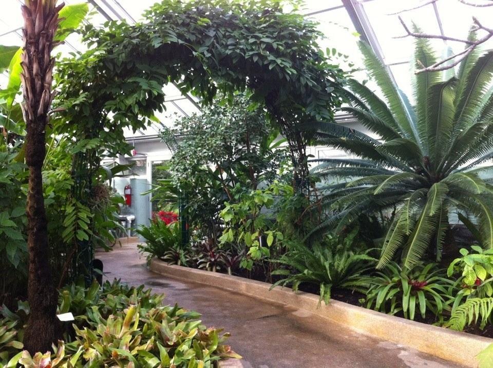 Howard Peter Rawlings Conservatory