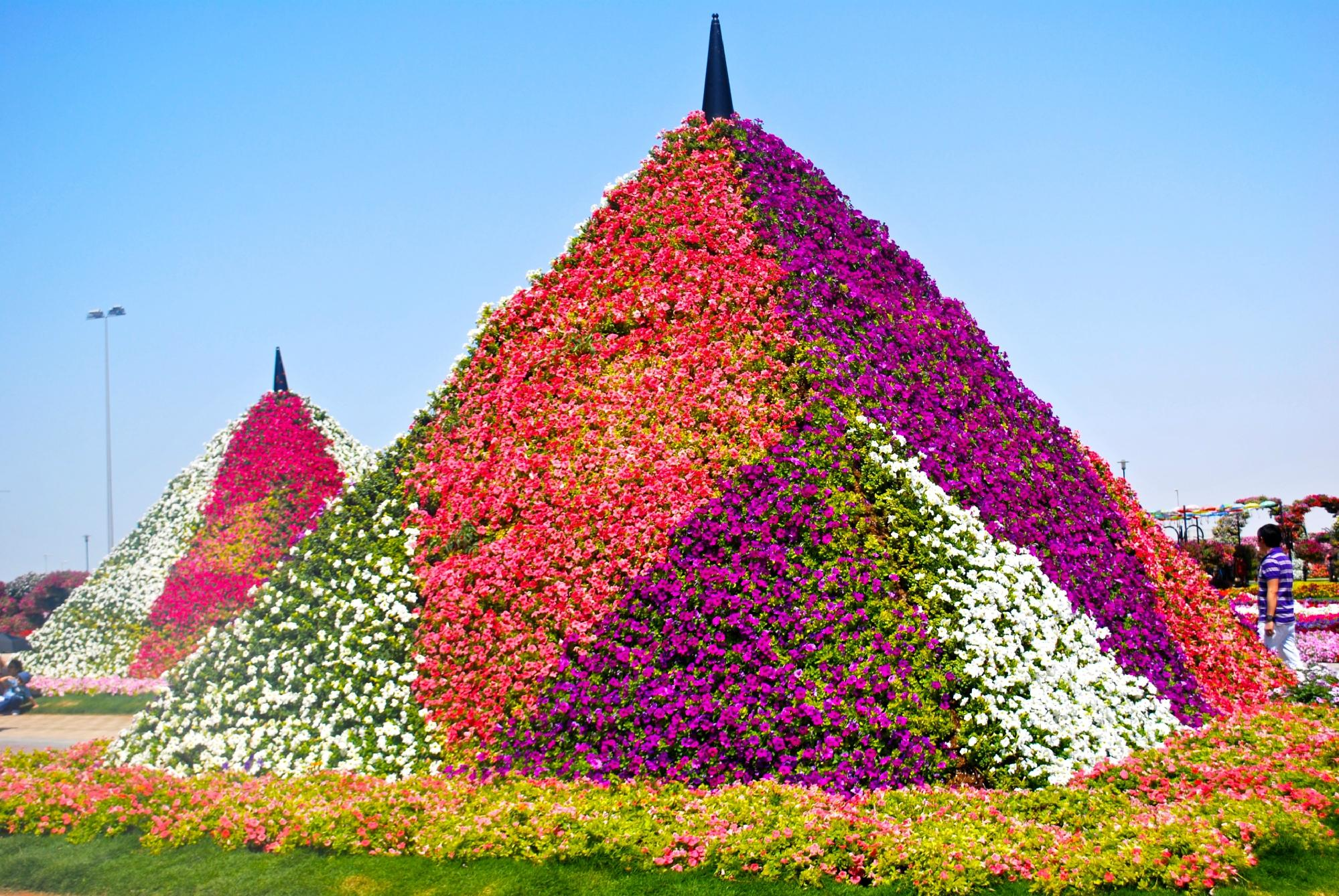 Dubai Miracle Garden 2018 What To Know Before You Go With Photos
