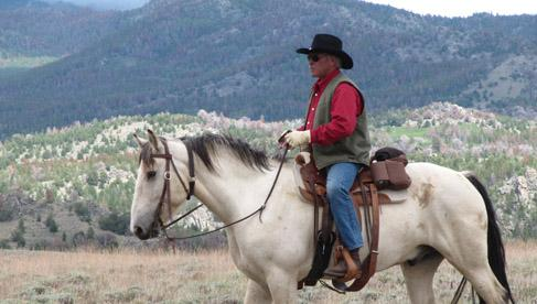 Harmony Horse Adventures