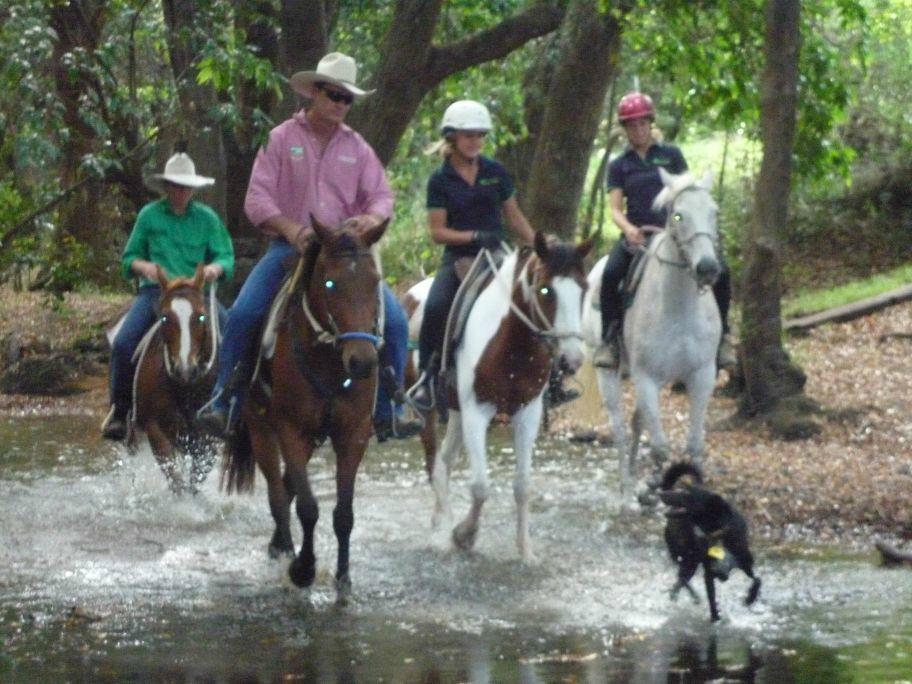 'Brooloo Park' Eco Retreat & Equine Resort