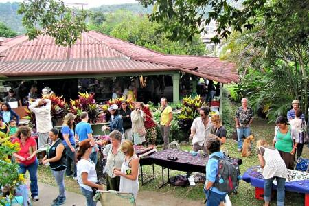 Boquete Tuesday Market