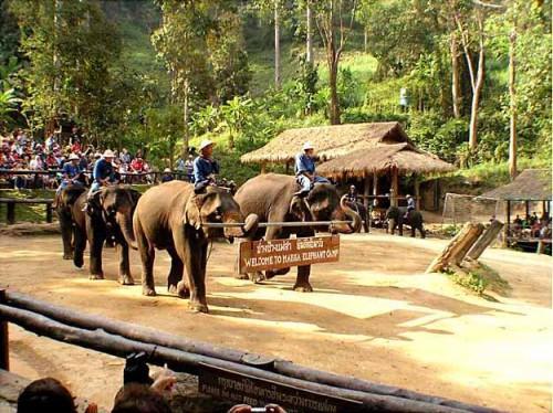 Asia Travel Legend - Bangkok Day Tours