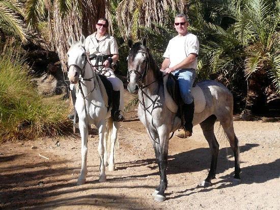 Horseriding Dahab