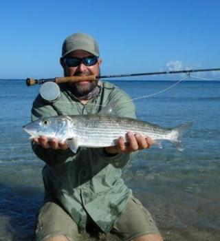 Inshore Fishing Puerto Rico