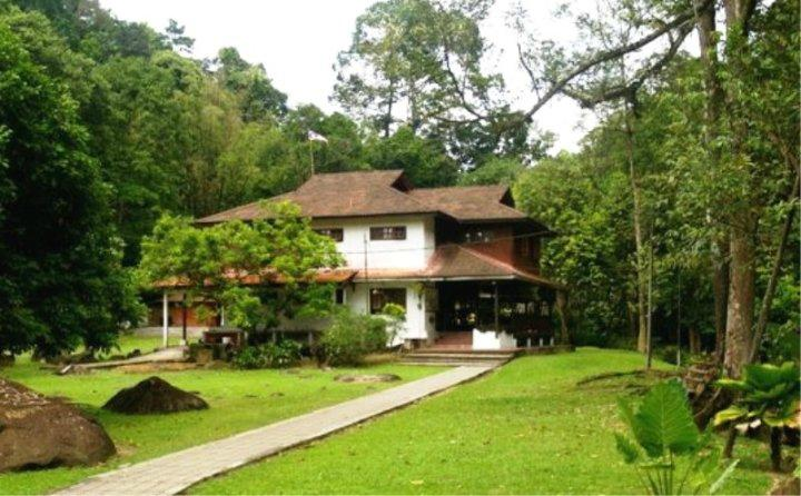 Jungle Lodge Alang Sedayu