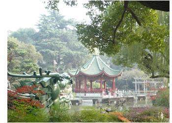 Shanghai Lilac Garden