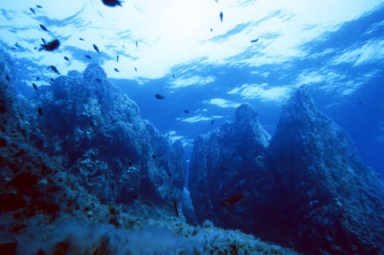 Altamarea Diving Center