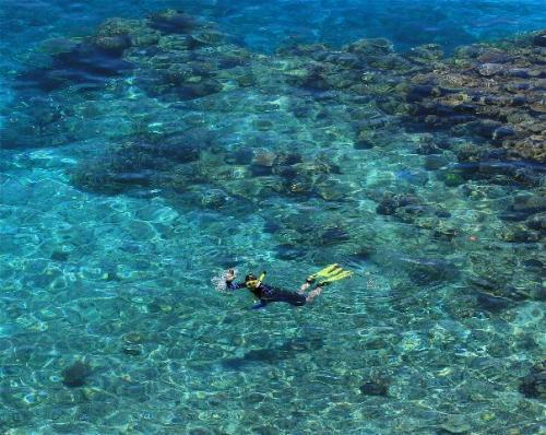 Bahamas Naturalist Expeditions