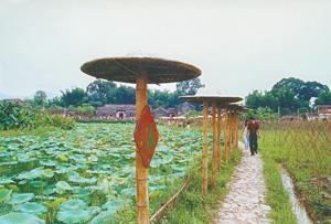 Heyuan Xinfeng River Reservoir Dam