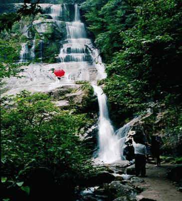 Jiuyi Mountain National Forest Park