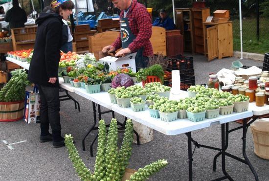 Organic Farmers' Market