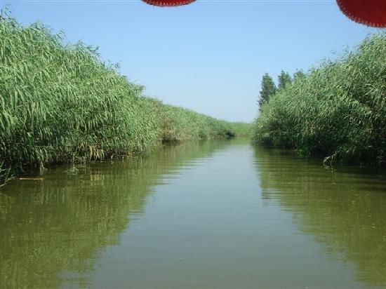 Baiyang Lake Wangjiazhai Folk Culture Village
