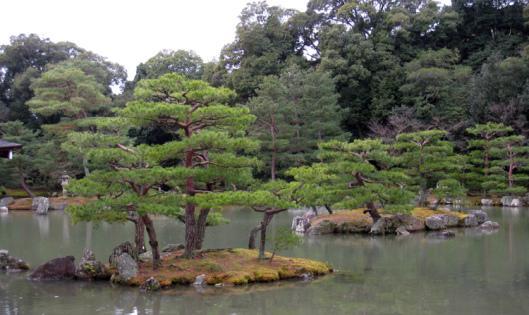 Mirror Pond at Mane Island