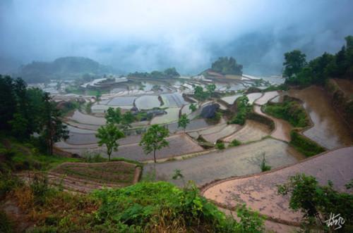 Meiyuan Terrace