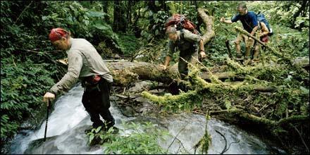 Kapa Kapa Trail