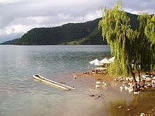 Xingyun Lake Marsh