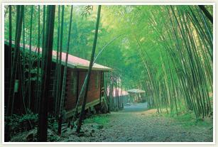 Taiping Village