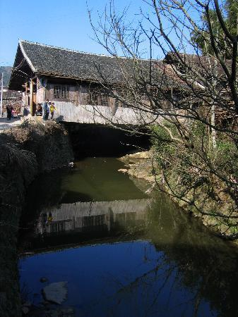 Caoyutang Forest Park