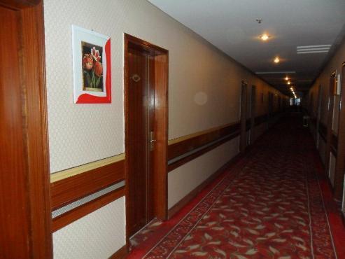 Sunny Hotel Wuhan Huangpo